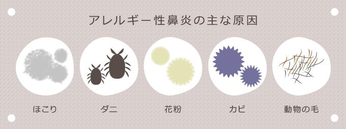 アレルギー性鼻炎の主な原因